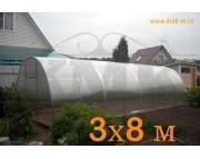 "Теплица ""Царицынская"", 3х8 м, шаг дуги 1 м, дуги 40х20, цинк, с поликарбонатом"