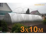 "Теплица ""Царицынская"", 3х10 м, шаг дуги 1 м, дуги 40х20, цинк, с поликарбонатом"